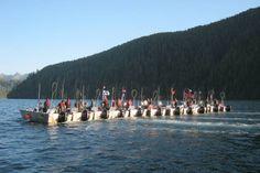 Haida Nation win injunction against commercial fishery on Haida Gwaii