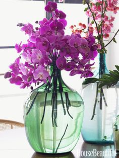 This vase of orchids is simply stunning! Go for the real deal and add a splash of orchid inspiration into your space by adding a bunch to a simple vase. Beautiful! #hotlooks