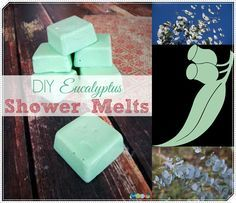"Eucalyptus Essential Oil Shower Melts to Clear Congestion Homesteading  - The Homestead Survival .Com     ""Please Share This Pin"""