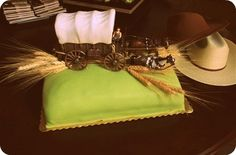 Western themed cake for a birthday party