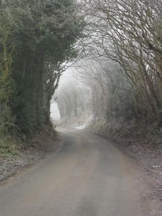 Frosty archway on Hobs Hole Lane, Aldridge, Walsall, England