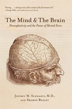 This book shares insight into the brain and quantum physics The Mind and the Brain: Neuroplasticity and the Power of Mental Force By Jeffrey M. Good Books, Books To Read, My Books, Cultura Nerd, Marguerite Duras, Neuroplasticity, Neuroscience, Buddhist Traditions, Psychology Books
