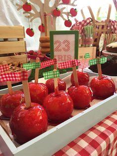 manzanas-caramelizadas-para-fiesta-de-cumpleanos-de-campo