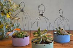 Bottle or plastic container & wire Tin Can Crafts, Wire Crafts, Diy And Crafts, Garden Projects, Diy Projects, Flower Pots, Flowers, Painted Pots, Wire Art