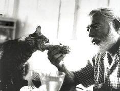 Ernest Hemingway mit einer veganen Katze
