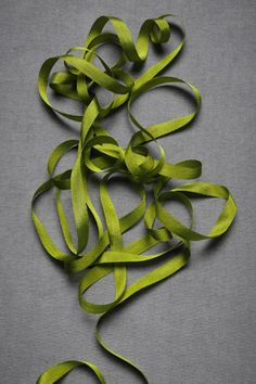 loving this green silk ribbon from BHLDN, too