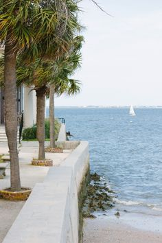 View from the Battery on a walk in Charleston, SC/ @azford on Instagram