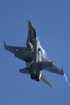Swiss Air Force F18 in which those daring Swiss now and again knock their mountian tops of.