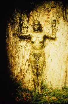Photographie de la performance l' Abre de vie, d'Ana Mendieta, réalisé en 1976 près d'Old Man's Creek.  Elle explore le lien entre la nature et le corps d'une femme. En posant contre le chêne couverte de boue et d'herbe le thème de la sexualité et de la culture es aussi remit en question.
