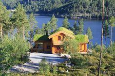 Natuurhuisje 29678 - vakantiehuis in Vråliosen - vrådal