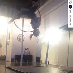 Neat combo! #beastlybuilt #aerialarts #aerial #aerialist #aerialhoop #aerialfitness #aeriallyra #lyratricks #lyra #hoopdancing #hoopaddict #hoop #hooptricks #combo #aerialcombo #aerialtraining #training #transition  #acrobatics #acro #CircusInspiration #circus #circusfitness #circuseverydamnday #lyracombo  #Repost @aerialcanvas ・・・ Liking this little transition 💓 #aerialhoop  #twizzle #greenfrogs🐸
