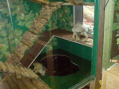 Reptile cage plans - reptilienkäfig pläne - plans de cage de r. - Reptile cage plans – reptilienkäfig pläne – plans de cage de r… - Reptile Cage, Reptile Room, Turtle Enclosure, Reptile Enclosure, Animal Shelter, Animal Rescue, Pictures Of Reptiles, Iguana Cage, Large Terrarium