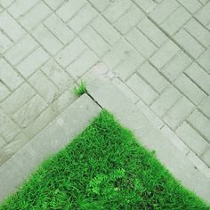 Catchingcorners: Green grass