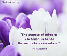 """""""The purpose of miracles is to teach us to see the miraculous everywhere."""" - St. Augustine"""