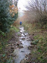 the descent (lydiaknowsbest) Tags: family holiday rain walking somerset hills devon moors exmoor twitchen