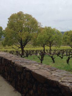 Stryker Winery. Sonoma, CA