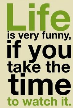 watch life. it's hilarious.