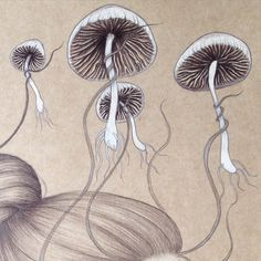 Details of 'Possessions' available as prints in my #redbubble and #society6 stores http://www.redbubble.com/people/thefloralfox #art #mushrooms #pencil #sketch #details #detailsfordays #hair #illustration #drawing #nature #botany #botanical #prints #artist #kraftpaper