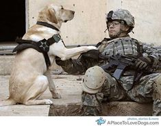 Heroes. Man & man's best friend! I love that our boys have them! It must make it easier to come back from seeing horrific things & bury your face in that dog & cry. And yes, they do cry, thank God! No man should internalize the things they do for us.