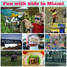 When you think about Miami and South Florida in general, the first thing that comes to mind is the beach, but there is so much more to have fun with your kids.
