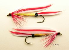 Parmachene Belle Salmon Flies, Fly Tying Patterns, Streamers, Fly Fishing, Patio, Paper Streamers, Fly Tying, Camping Tips, Leis