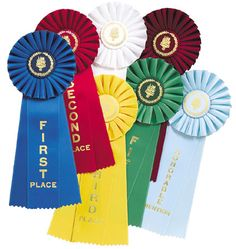 1st Place Blue Ribbon 2nd Place Red Ribbon 3rd Place Yellow Ribbon 4th Place White Ribbon 5th Place Green Ribbon Green Ribbon, White Ribbon, Trophy Rooms, Cook Off, Clydesdale, Room Themes, The Voice, Competition, Horse Breeds