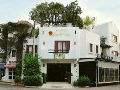Quinto Sol - 10% Off 	Charming Boutique Hotel featuring 20 rooms and Suites, all built around an old jungle tree. Located, just few steps from the beach, shopping and nightlife, Hotel Quinto Sol offer Cozy accommodations, personalized service and the atmosphere of the Mexican Caribbean.