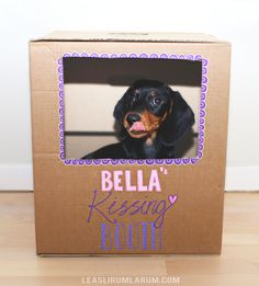 Make a cute kissing booth for your dog!