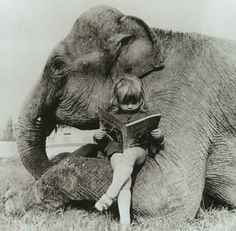 There is nothing quite like reading with your elephant.