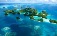 Palau. Source: http://best-diving.org/diving-pacific/149-diving-palau-islands-jellyfish-lake More Info: http://www.bbc.com/travel/feature/20120416-the-price-of-protecting-paradise-in-palau