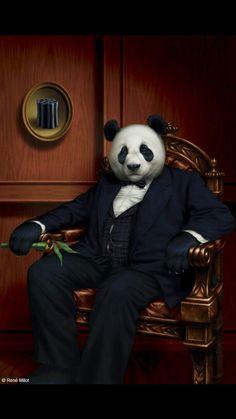Panda Boss by René Milot. ❣Julianne McPeters❣ no pin limits Cool Panda, Panda Love, Panda Wallpapers, Bear Art, Animal Heads, Pet Clothes, Pet Portraits, Baby Animals, Fantasy Art