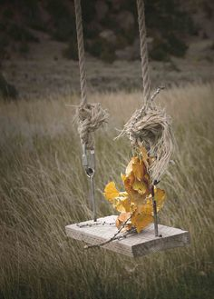 Fall on a Swing