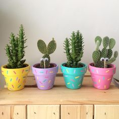 Perk up the décor of your house with varied types of embellished flower pots. Explore the enticing DIY flower pots ideas here for a striking effect. Deco Cactus, Cactus Flower, Painted Plant Pots, Painted Flower Pots, Decorated Flower Pots, Diy Flowers, Colorful Flowers, Potted Flowers, Planting Flowers