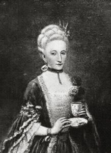 Born in Corfu, where her father Pietro Querini was governor, Countess-sum-courtesan Marina Querini Benzon was a famous blonde beauty, married to Count Pietro Giovanni Benzon in Venice Guide, Famous Blondes, Blonde Beauty, Marie Antoinette, Culture, History, Lady, Painting, Gender
