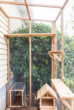 Want to let your cats outdoors, but keep them protected? Check out these tips and advice for building a catio. Cat Fence, Outdoor Cat Enclosure, Cat Cages, Cat Run, Cat Playground, Outdoor Cats, Outdoor Cat Cage, Cats And Kittens, Ragdoll Kittens