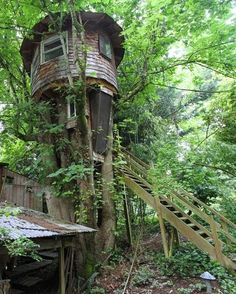 """""""Treehouse"""" by Ken Lewis"""