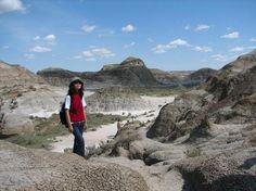 Parque Provincial dos Dinossauros, Canadá. Situado ao sul da cidade de Calgary, no sudoeste do Canadá, o Parque Provincial dos Dinossauros tem uma das maiores concentrações de fósseis de dinossauro do planeta. Mais de 40 espécies de dinossauros já foram descobertas no parque, que faz parte do Patrimônio Mundial da UNESCO desde a década de 70. Os turistas que visitam o parque podem conferir numerosos fósseis em áreas protegidas com visitas guiadas, e, entre junho é setembro, podem participar…