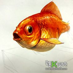 #금붕어 기초디자인, #기초디자인, #관훈K미술학원, #개체묘사, #상명대 Fish Logo, Hyperrealism, Watercolor Sketch, Fish Art, Goldfish, Marine Life, Pencil Art, Animal Drawings, Gouache