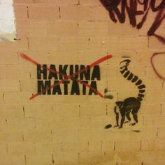#taller582 #hakunamatata #unafotoaldia