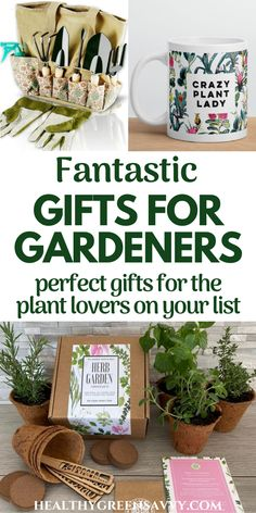 Need some great gift ideas for the gardeners on your list? Here are loads of inexpensive and splurge gifts gardeners will love! #giftideas #garden #gifts #gardensupplies #holiday #gardeninggifts #ecofriendly Green Living Tips, Garden Gifts, Gift List, Garden Supplies, Herb Garden, Gift For Lover, Healthy Living, Eco Friendly, Great Gifts