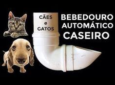 PVC PASSO A PASSO: Bebedouro para cachorro e gato, muito bom para ani...