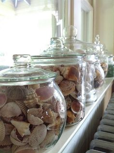 she sells seashells (credit ⚓ René Marie Photography) ⚓ Beach Cottage Life