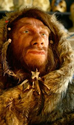 A reconstruction of a Neanderthal wearing warm clothing, using a bone as a clasp. Prehistoric Man, Prehistoric Animals, Early Humans, First Humans, Forensic Facial Reconstruction, Human Fossils, Human Evolution, Strange History, Ancient History