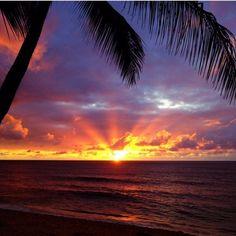 Gorgeous Beach Sunset!