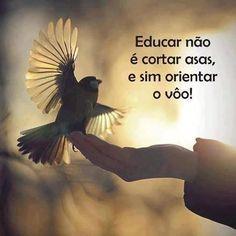 Educar não é cortar asas, e sim orientar o vôo