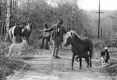 Asa Elliot, Guilford, 1971