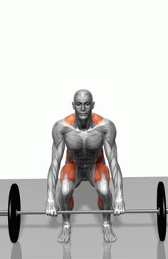 """The Deadlift is one of the all-around best you can do. It's vital for building a big, thick, strong back, and it trains just about every major and minor muscle group in the body."" Check out this great article by @mikebls, Mike really is such an inspiration to me."