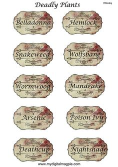 digital collage sheet Halloween apothecary labels by DigitalMagpie