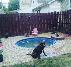 Backyard dog pool stock tank 34 new ideas Dog Friendly Backyard, Dog Backyard, Backyard Gazebo, Wedding Backyard, Outdoor Dog Area, Outdoor Ponds, Dog Swimming Pools, Dog Pools, Galvanized Stock Tank