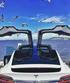 My Dream Car, Dream Cars, Airplane Car, Tesla Model X, Classy Cars, Tesla Motors, S Car, Future Car, Electric Cars